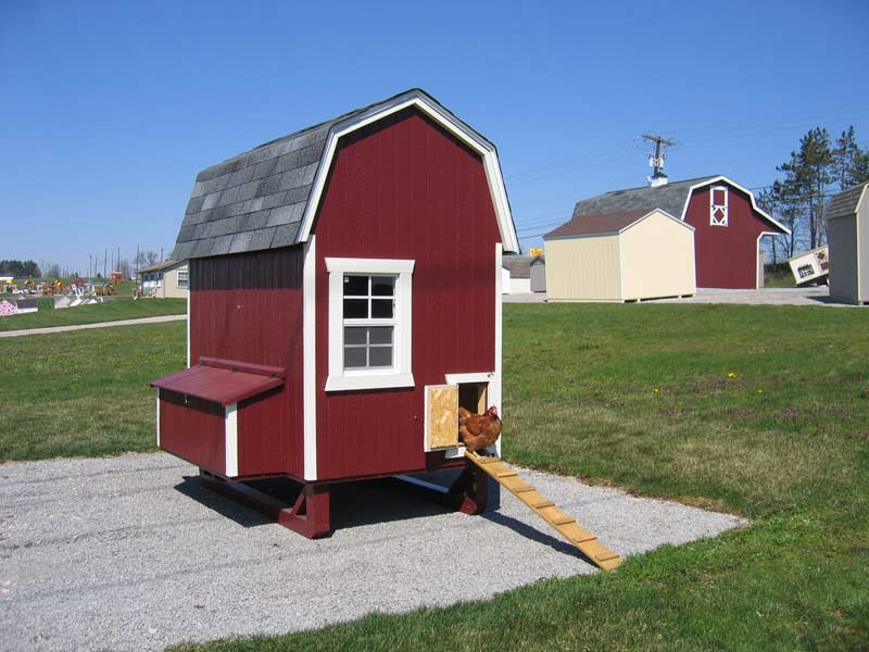 4×6 Gambrel Barn Chicken Coop Kit