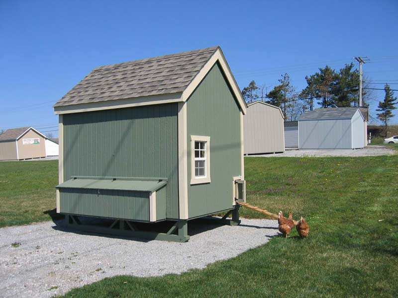 6x8 Colonial Gable Chicken Coop Kit