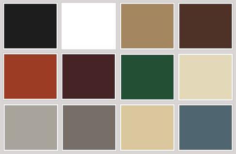color-options